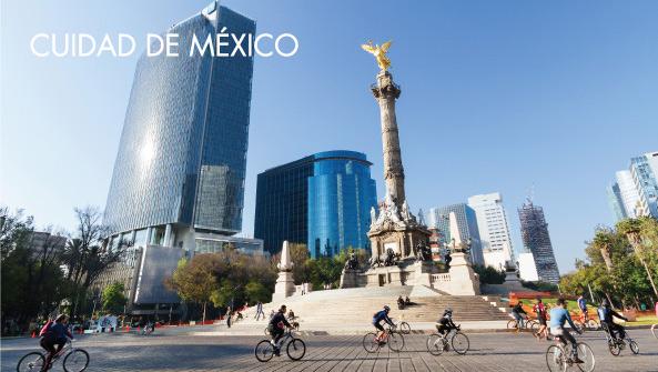 OneSight -   Ciudad de México